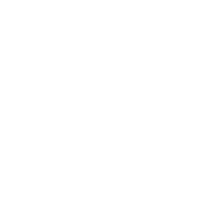 bizstream academy logo